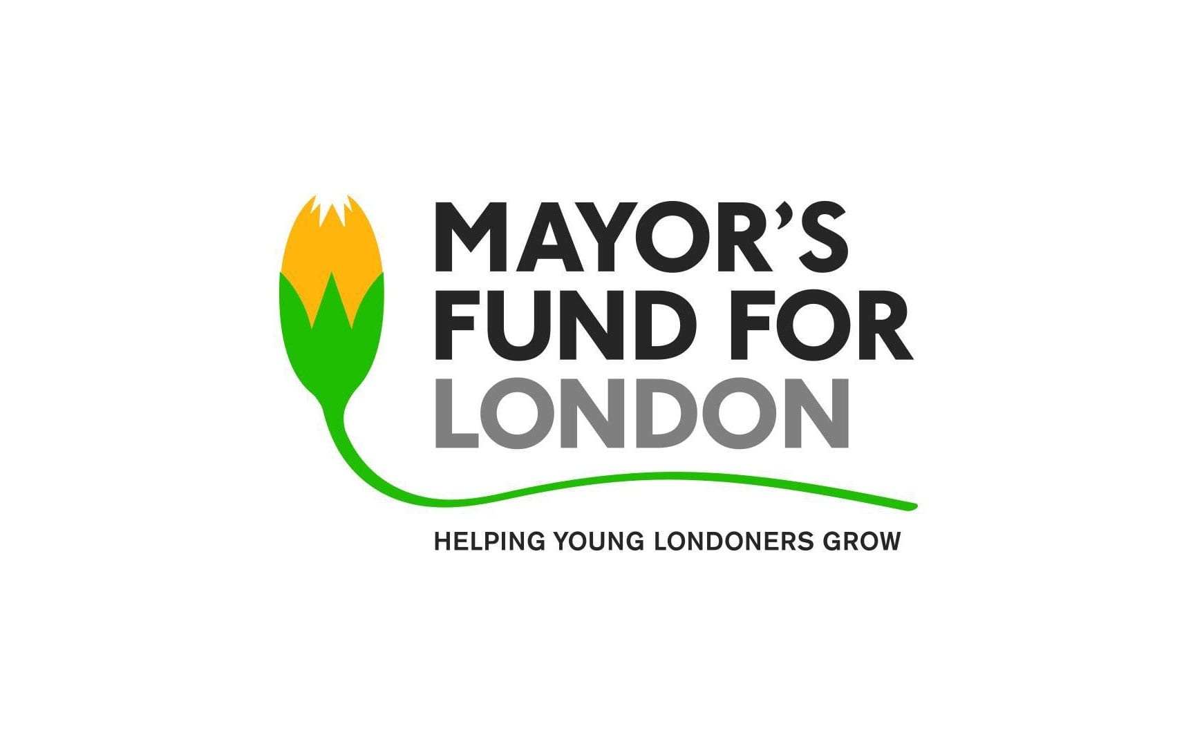 Young Londoners Fund